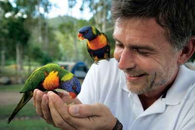 cania gorge national park wildlife birds bird watching parrot